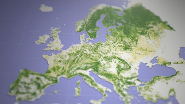 European Forests: Central to the World We Live In