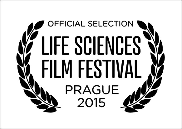 awards 2015 official selection
