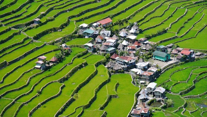 Close To Heaven: The Rice Terraces of the Philippines
