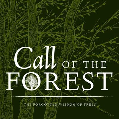 Jeff McKay: Call Of The Forest (The Forgotten Wisdom Of Trees)