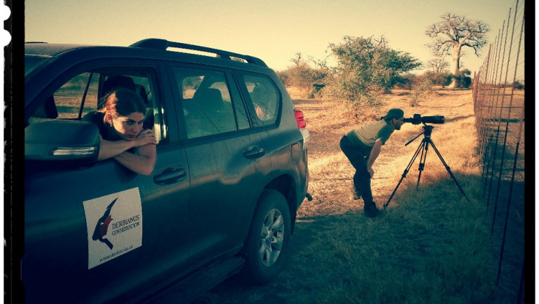 Czechs Protect Elands in Senegal